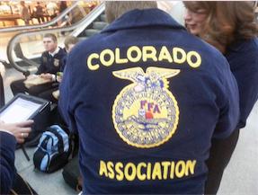 FFA_jacket-back